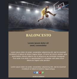 Basketball-basic-03 (ES)